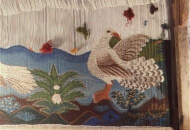 bird-and-tree-1-458x315